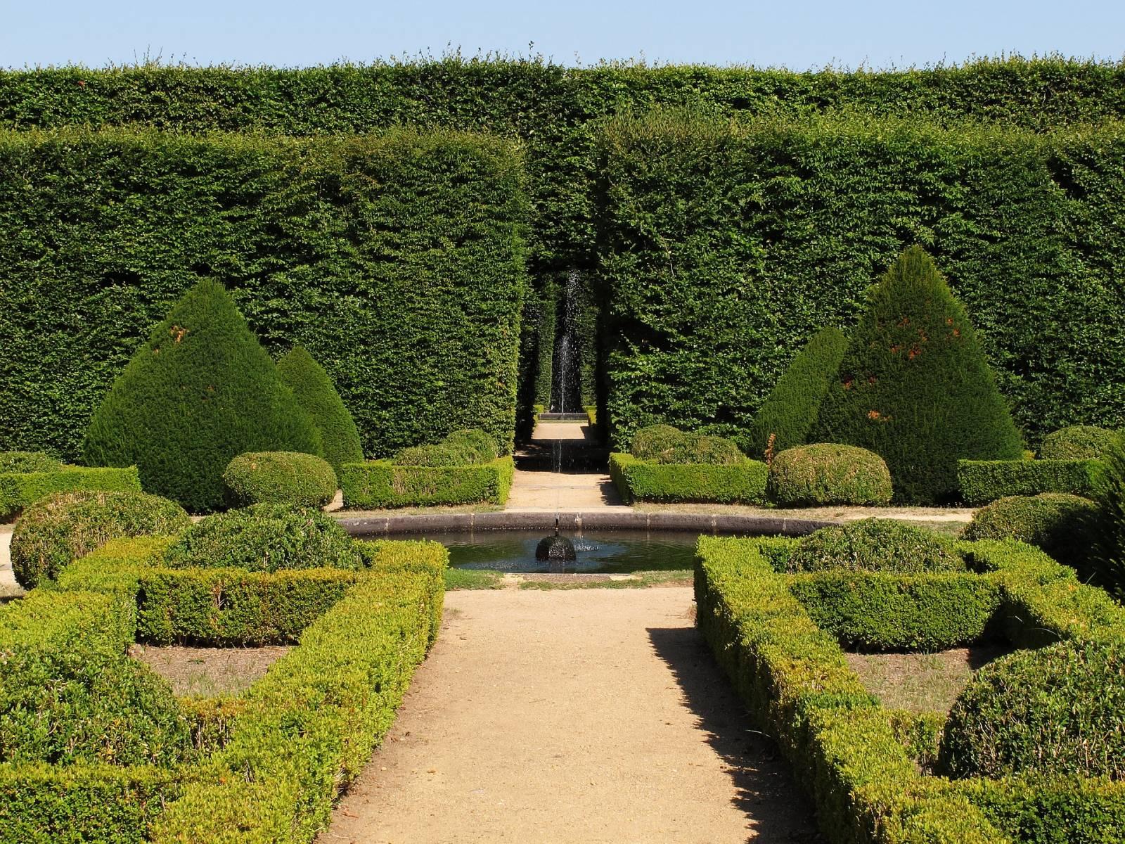 Taille en topiaire dans jardin à la française - Jardinier paysagiste ...